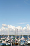 boats in harbor, denmark poster