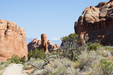 touring in arches national park 6 poster