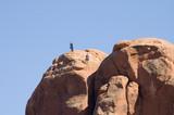 rock climbers poster