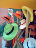 boutique de chapeaux poster