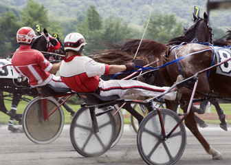 harness race-2