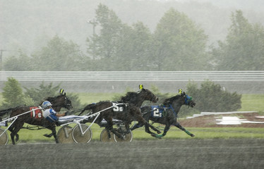 harness race-7