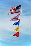 flags of usa,florida and navy poster