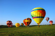 balloon landing field - 1190491