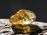 shiny amber - 1194412