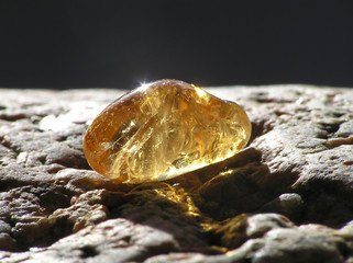 shiny amber