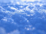 snow surface poster