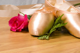 ballet slipper - shoes with rose poster