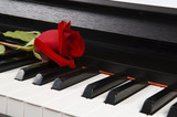 sheet music with rose on piano poster