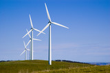 starfish hill wind turbines