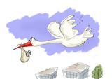 stork to bring newborn poster