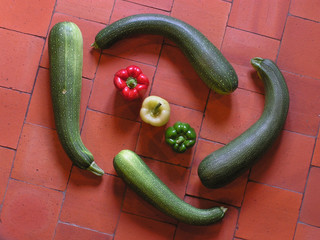 0471-spirale de légumes