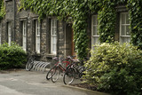 bikes at trinity college poster