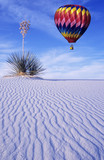 balloon over yucca poster