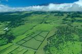 big island aerial shot - plantations, mauna kea poster