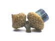 multicolor tourmaline chesnut 2