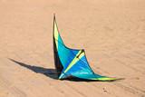 kite on ground poster