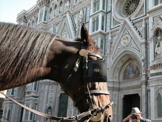 horse at florence church