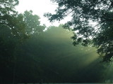misty landscape poster