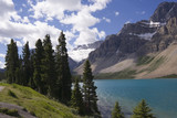 shore of the bow lake and view to the crowfoot glacier poster