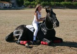 cheval couché et sa cavalière poster