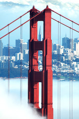 golden gate, transamerica and fog
