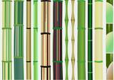 Fototapety texture bamboo
