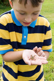 boy with a small frog poster