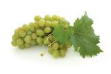 green grape cluster poster