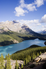 panorama of the peyto lake