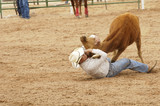 steer wrestling 1 poster