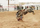 saddle bronc 2 poster