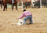 steer wrestling 2 poster