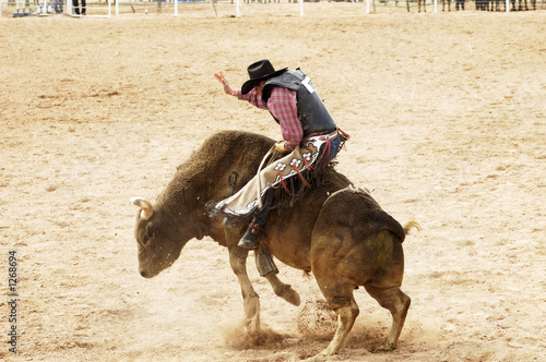 Canvas Extreme Sporten bull riding 1