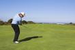 golf #25