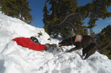 avalanche rescue dog pulling victim out poster