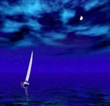 sailer in the quiet night  sea poster