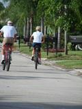 senior cyclists poster