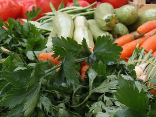 vegetables details