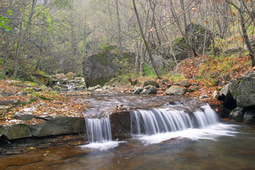 mountain brook in autumn