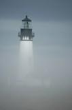 yaquina fog