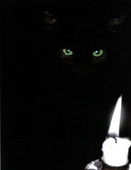 black cat and flame
