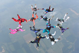 12 skydivers complete a formation in freefall poster