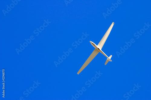 Leinwanddruck Bild soaring through blue sky