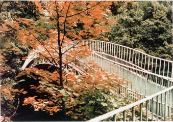 princess bridge