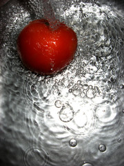 fresh tomato in water