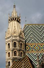 toiture de la cathédrale saint etienne de vienne