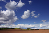 spring countryside / blue sky with the white cloud poster