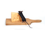 mouse and cheese poster