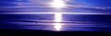 oregon coast panorama - 1310644